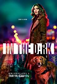 In the Dark (2019) cover