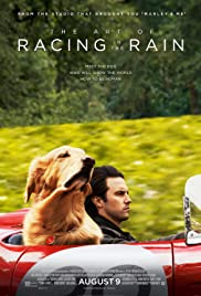 The Art of Racing in the Rain (2019) cover
