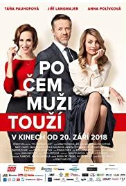 Po cem muzi touzí (2018) cover