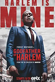 Godfather of Harlem (2019) cover