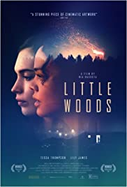 Little Woods (2018) cover