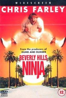 Beverly Hills Ninja 1997 poster