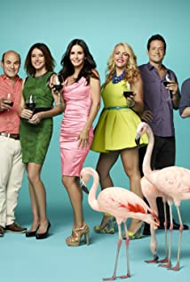 Cougar Town (2009) cover