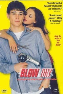 Blow Dry (2001) cover