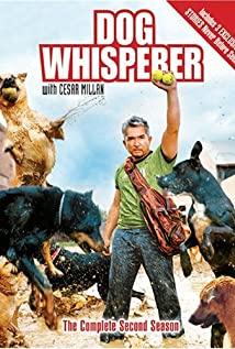 Dog Whisperer with Cesar Millan 2004 poster