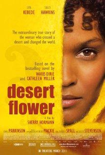 Desert Flower (2009) cover
