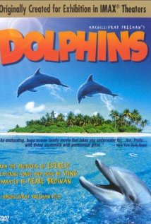 Dolphins 2000 poster