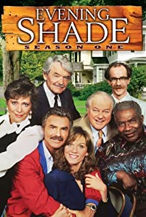 Evening Shade (1990) cover