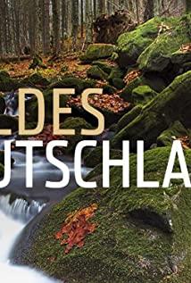 Expeditionen ins Tierreich 1965 poster