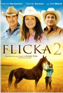 Flicka 2 (2010) cover