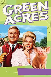 Green Acres 1965 poster