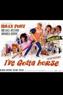 I've Gotta Horse (1966) cover