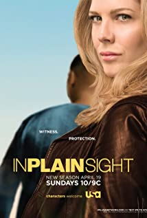 In Plain Sight (2008) cover