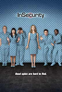 InSecurity 2011 poster