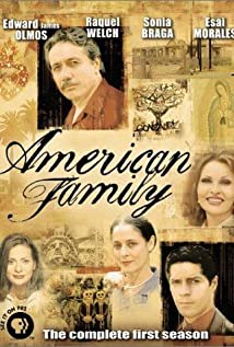 American Family 2002 poster