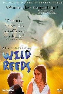 Les roseaux sauvages 1994 poster
