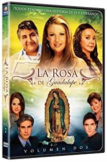 La rosa de Guadalupe (2008) cover