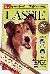 Lassie 1954 poster