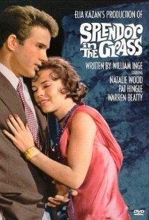 Splendor in the Grass (1961) cover