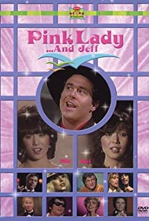 Pink Lady (1980) cover
