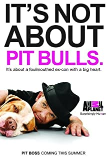 Pit Boss 2010 poster