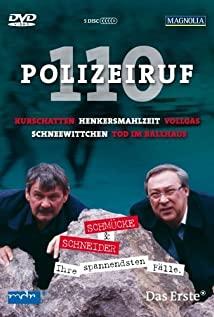 Polizeiruf 110 (1971) cover