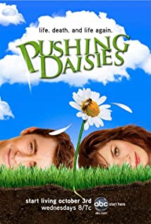 Pushing Daisies (2007) cover