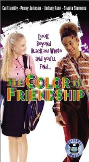 The Color of Friendship (2000) cover