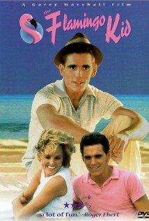 The Flamingo Kid (1984) cover