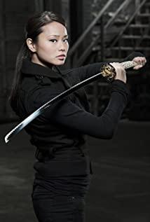 Samurai Girl (2008) cover
