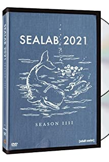 Sealab 2021 (2000) cover
