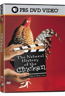 The Natural History of the Chicken (2000) cover