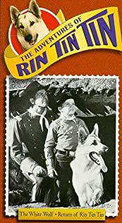 The Adventures of Rin Tin Tin (1954) cover