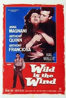 Wild Is the Wind (1957) cover