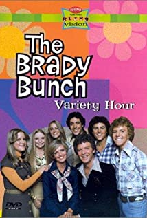 The Brady Bunch Variety Hour (1976) cover