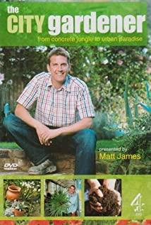 The City Gardener (2003) cover