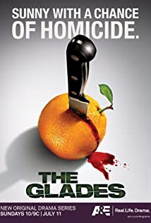 The Glades (2010) cover