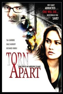 Torn Apart (2004) cover