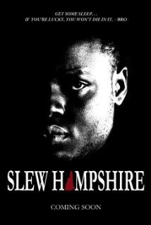 Slew Hampshire (2013) cover