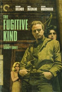 The Fugitive Kind (1960) cover