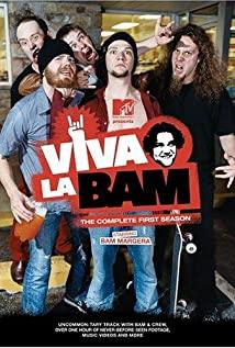 Viva la Bam (2003) cover