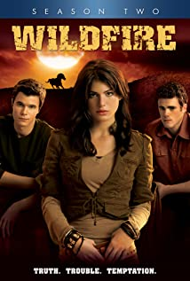 Wildfire (2005) cover
