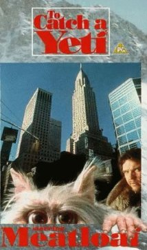 To Catch a Yeti 1995 poster