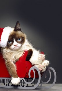 Grumpy Cat's Worst Christmas Ever (2014) cover