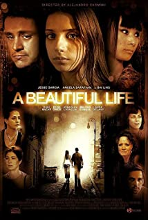 A Beautiful Life 2008 poster