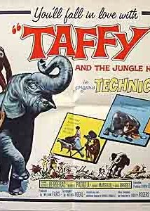 Taffy and the Jungle Hunter (1965) cover