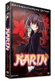 Karin (2005) cover