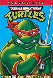 Teenage Mutant Ninja Turtles (1987) cover