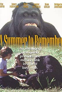 A Summer to Remember 1985 poster