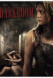 Darkroom (2013) cover